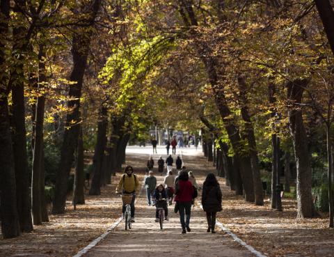 Visitas guiadas al Retiro en otoño